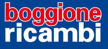 boggione-logo